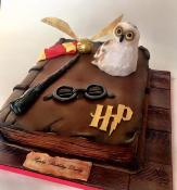 "Gâteau livre ""Harry Potter""  20-25 parts"